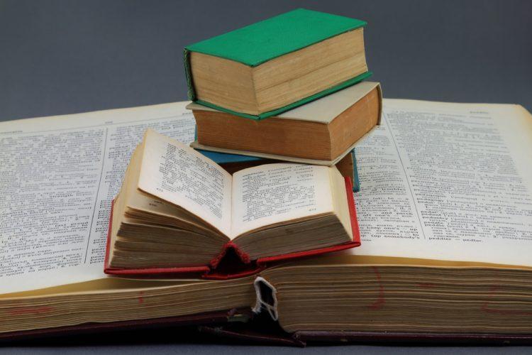 Ist ein Übersetzer gleich ein Wörterbuch?
