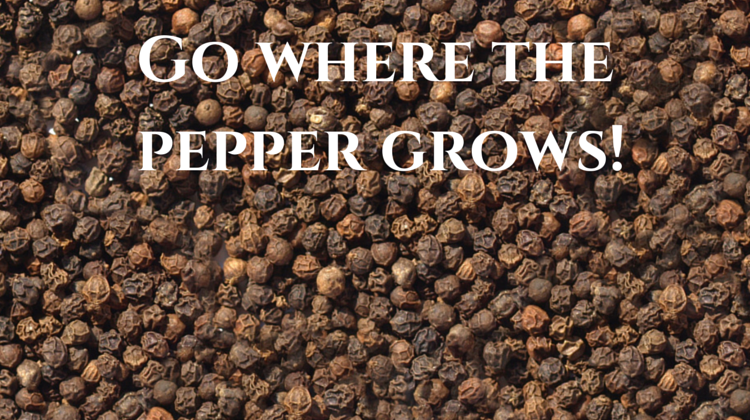 GO WHERE THE PEPPER GROWS!?!